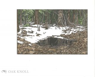 OF WOODLAND POOLS, SPRING-HOLES & DITCHES.