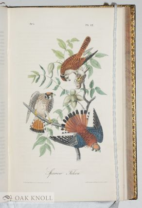 THE BIRDS OF AMERICA, FROM DRAWINGS MADE IN THE UNITED STATES AND THEIR TERRITORIES.